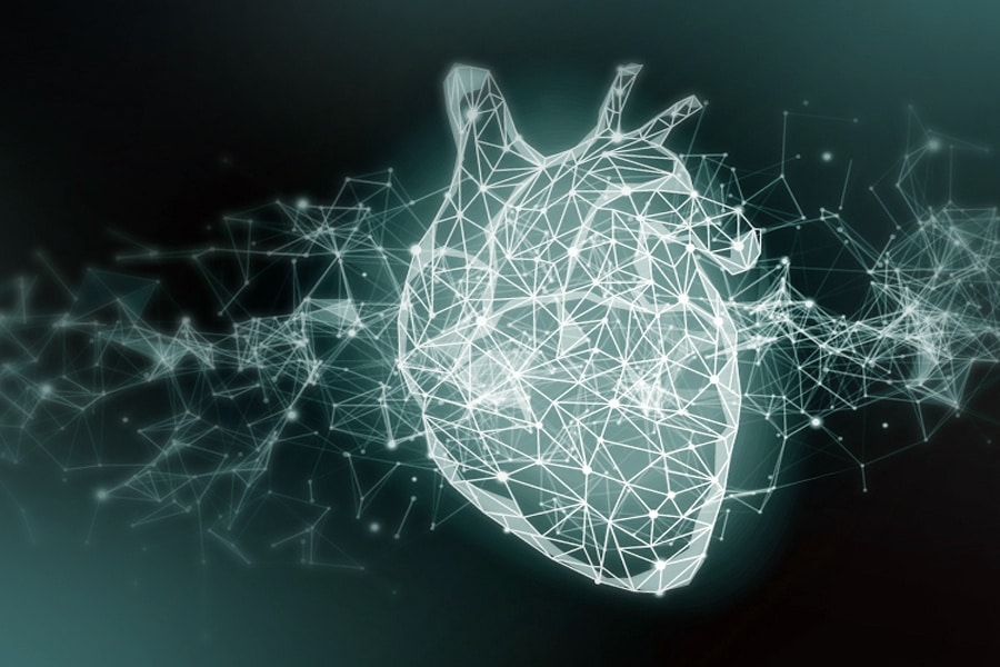 gestresstes Herz, Illustration, Stressechokardiographie